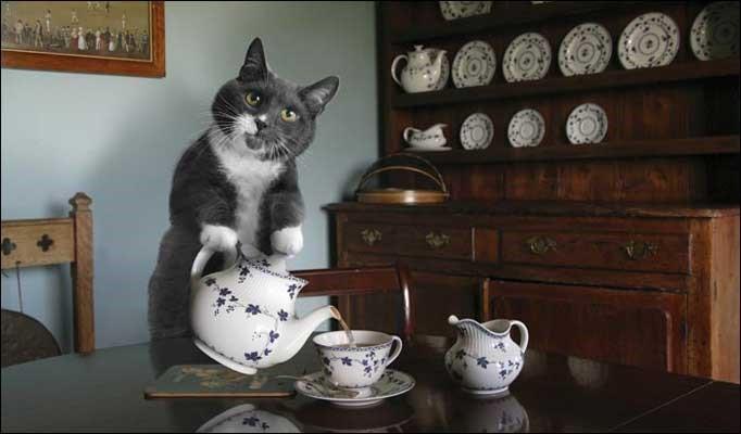 Making Tea & Coffee Matters. A Lot!